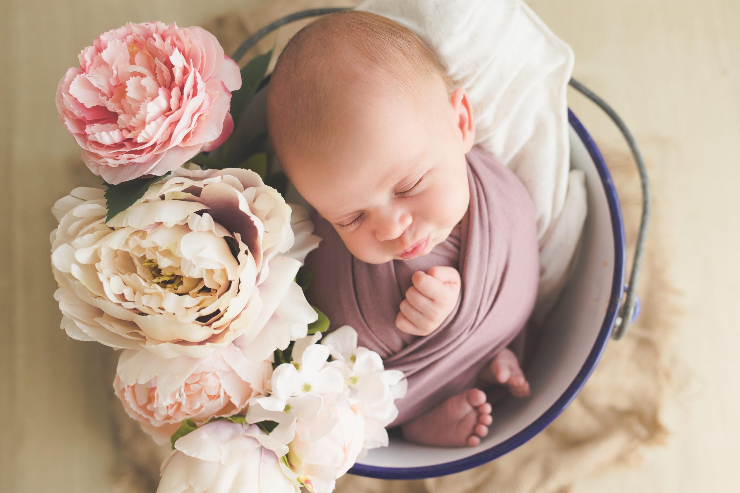 photo nouveau-né bébé fleurs studio homeostasie photographie Liège