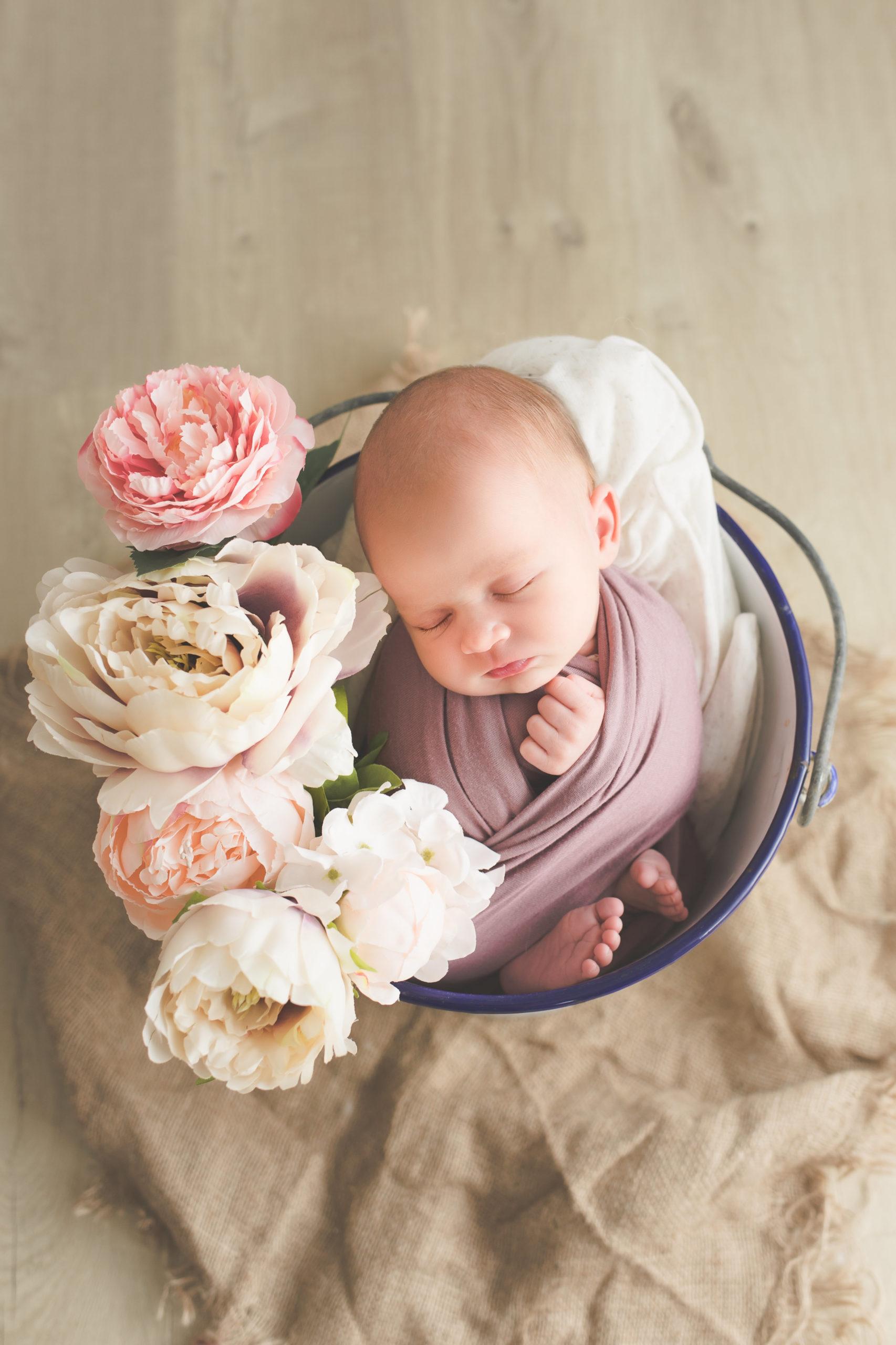 photo nouveau-né bébé seau fleurs studio homeostasie photographie Liège